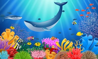 Cartoon whale with Coral Reef Underwater in Ocean. Vector illustration
