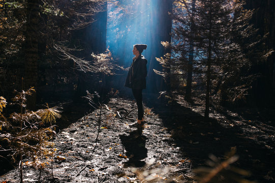 portrait of woman walking into forest with blue smoke,