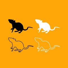 Rat black and white set icon.