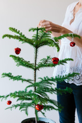 Unrecognisable woman decorating a small Norfolk Island Pine Tree for Christmas
