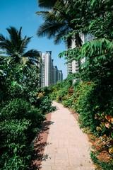A lush green walkway