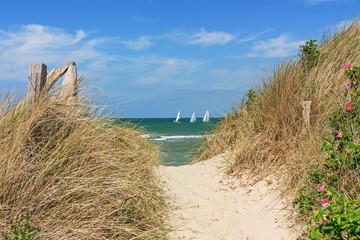 Fototapete - Weg durch Dünen zum Strand an der Ostsee mit blauem Himmel mit Wolken bei Heiligenhafen, Schleswig-Holstein. Im Hintergrund Segelboote