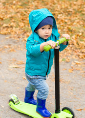 Little boy in waterproof coat and boots is riding scooter on yellow leaves. Active leisure for toddler. Child having fun outdoors.