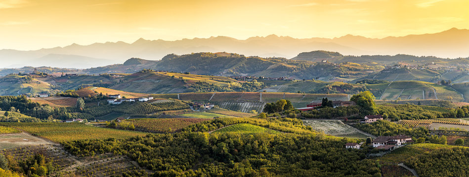 wide panorama of Langhe region in northern italy, on autumn,unes