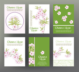 Sakura, cherry. Set of six cards with traditional Japanese flowe