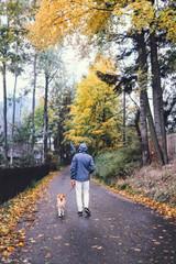 Man walk with dog on autumn street