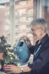 Senior older woman watering and tending to her plant