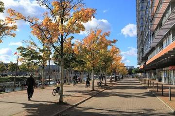Radfahrer und Spaziergänger am Germaniahafen in Kiel im Herbst