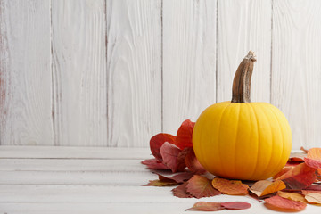 Beautiful yellow pumpkin in autumn leaves, Thanksgiving and Halloween holiday decoration