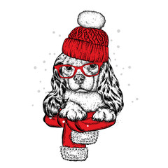 Cute dog in a hat, scarf and glasses. Purebred puppy. Spaniel in winter clothes. Vector illustration for a postcard or a poster, print for clothes.