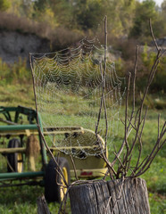 Water Drops on a Web attached to twigs in the foreground and fall foliage, a field and farm equipment are in the background.