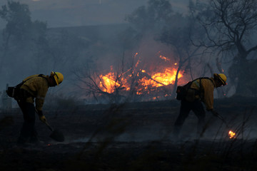 Firefighters work to put out hot spots on a fast moving wind driven wildfire in Orange, California