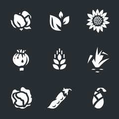 Vector Set of Harvest Icons.