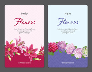 Colorful lilies flower and hydrangea template. Vector set of blooming floral for wedding invitations and greeting card design.