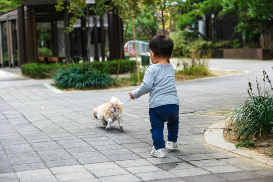 강아지와 산책중인 아기