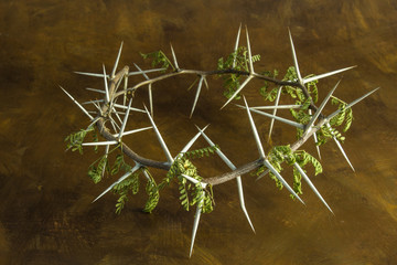Natural thorn branch crown on brown grunge background - conceptual image of Jesus Christ crucifixion