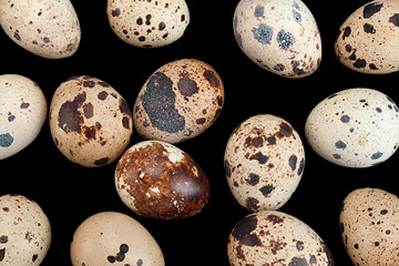 Eggs background on black