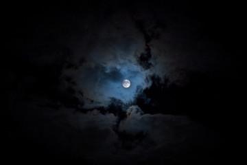 中秋の名月・満月