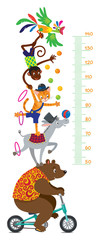 Funny circus animals. Meter wall or height chart
