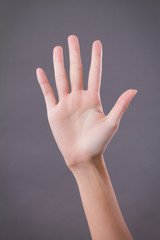 hand showing, pointing up 5 fingers, number five hand gesture