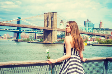 Young Woman missing you, waiting for you, holding white rose, wearing black, white striped dress, standing by fence at harbor in New York, looking away. Manhattan, Brooklyn bridges on background..