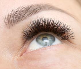 eye lush extension
