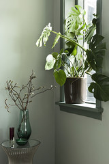 Glas vase on table next to window with plants