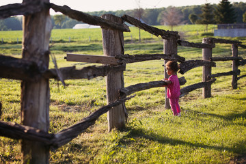 Toddler girl standing and looking past old farm log fence