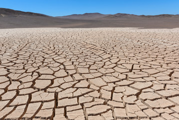 Dry cracked earth, Atacama, Chile