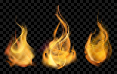 vector realistic fire