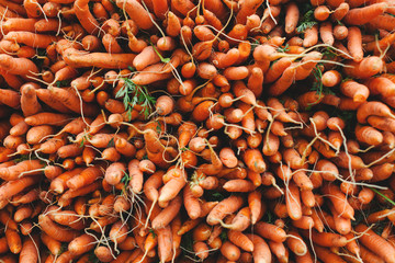 Bunch of carrots on an organic market.