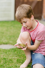 Boy holding frog in garden at home