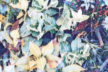 Tropical leaf top view. Blue yellow leaf. Exotic garden digital illustration.