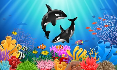 Cartoon killer whale with Coral Reef Underwater in Ocean. Vector illustration