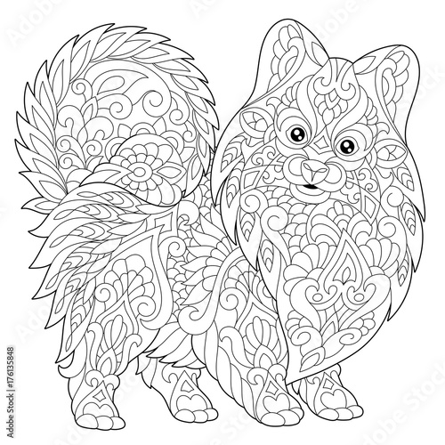 quot Coloring page of pomeranian dog