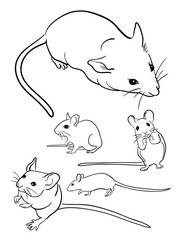 Mice line art 01. Good use for symbol, logo, web icon, mascot, sign, or any design you want.