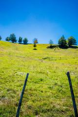 Paysage de l'Aveyron