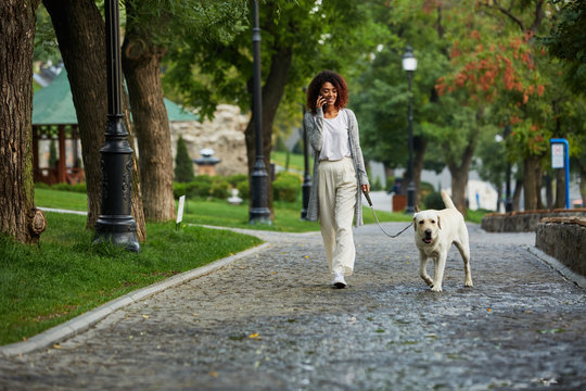 Young busy beautiful lady walking with dog and talking on phone