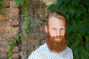 Man with long red beard portrait against brik wall