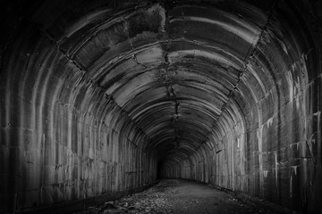 A deep and mysterious dark tunnel invites the visitor to explore