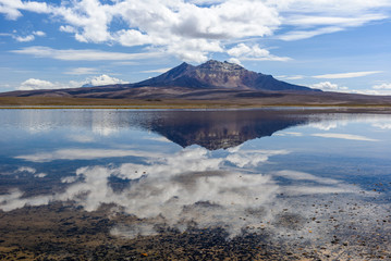 Parinacota volcano and Chungara lake, Lauca National Park, Chile