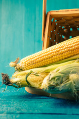 Photo of corn cobs in wooden basket
