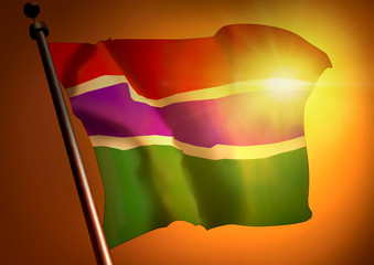winner waving Gambia flag against the sunset