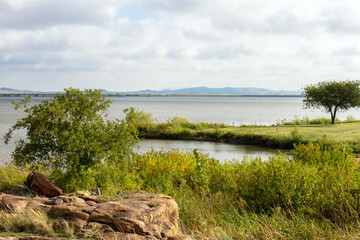 Great Plains State Park in Oklahoma, on the shore of the Tom Steed Reservoir