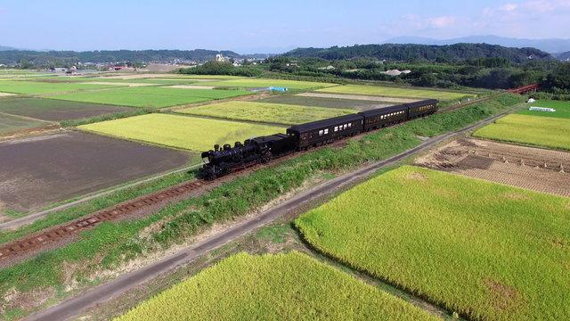 稲田の中を走る蒸気機関車(SL人吉)と熊本県人吉市の田園風景