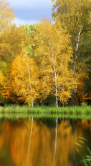 Bright photo of autumn trees and a pond