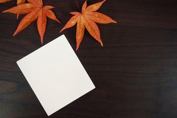 단풍잎과 사진, 엽서,메모