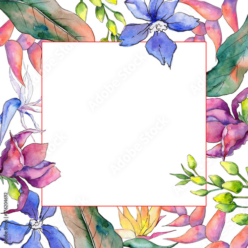 Tropical Hawaii leaves frame in a watercolor style. Aquarelle wild ...
