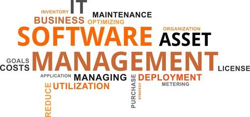 word cloud - software asset management