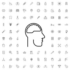 Brain in head icon. set of outline medicine icons.